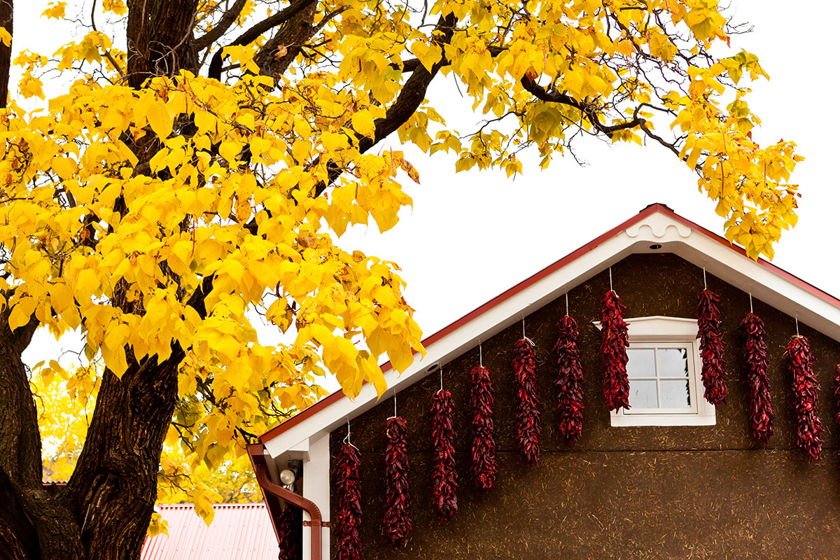5 Home Maintenance Tips for Fall