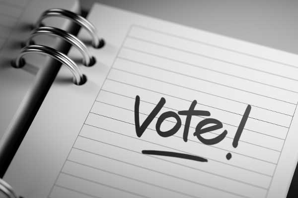 VOTE: Endorsed REALTOR® Champions on Election Day
