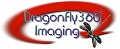 DragonFly 360 Imaging logo